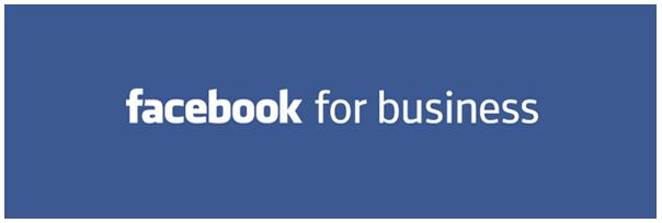 Ebook gratuit : la publicité sur facebook