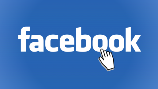 Facebook en France